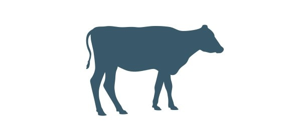 FIRESTONE_AG_EVO_Glamour_Page_4Column_Livestock